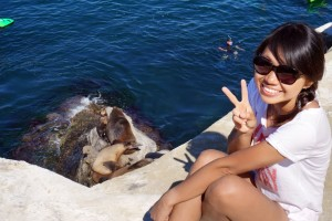 With seals at the La Jolla Cove, CA.