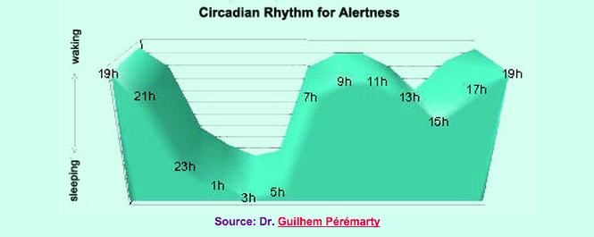 Circadian rhythm for alertness, based on body temperature