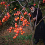 A monk at work at Mount Athos. The life of a monk at Mt Athos is divided into 3 parts: prayer, rest, and work.