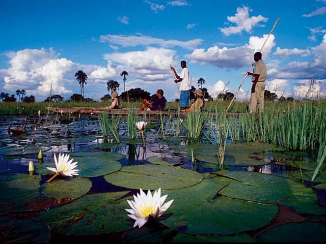 African safari in the Okavango delta.