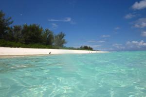 White sand beach, Midway.