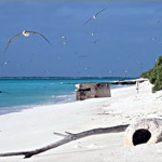 Midway Island Atoll.