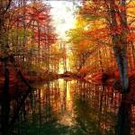 Yedi Goller national park in Turkey.