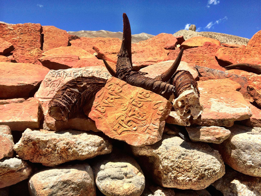 Om Stone with horns, Mustang, Tibet.