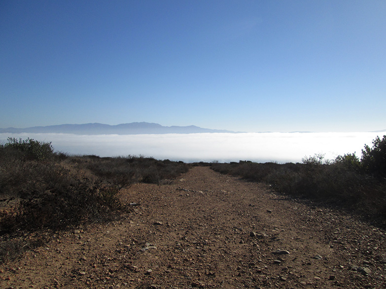 Hiking above Ensenada, Baja California, Mexico.