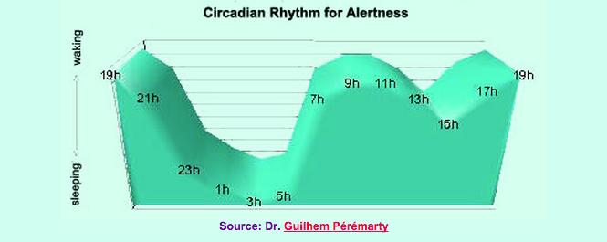 Circadian rhythm for alertness, based on body temperature